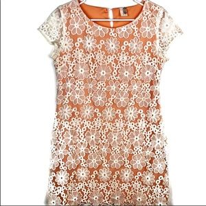 Anthropologie Dresses - Floral Lace Dress ANTHRO Francesca's Bird Cage S